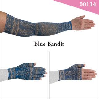 00114_Blue_Bandit