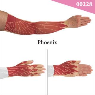 00228_Phoenix