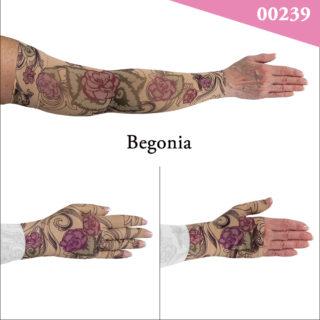 00239_Begonia